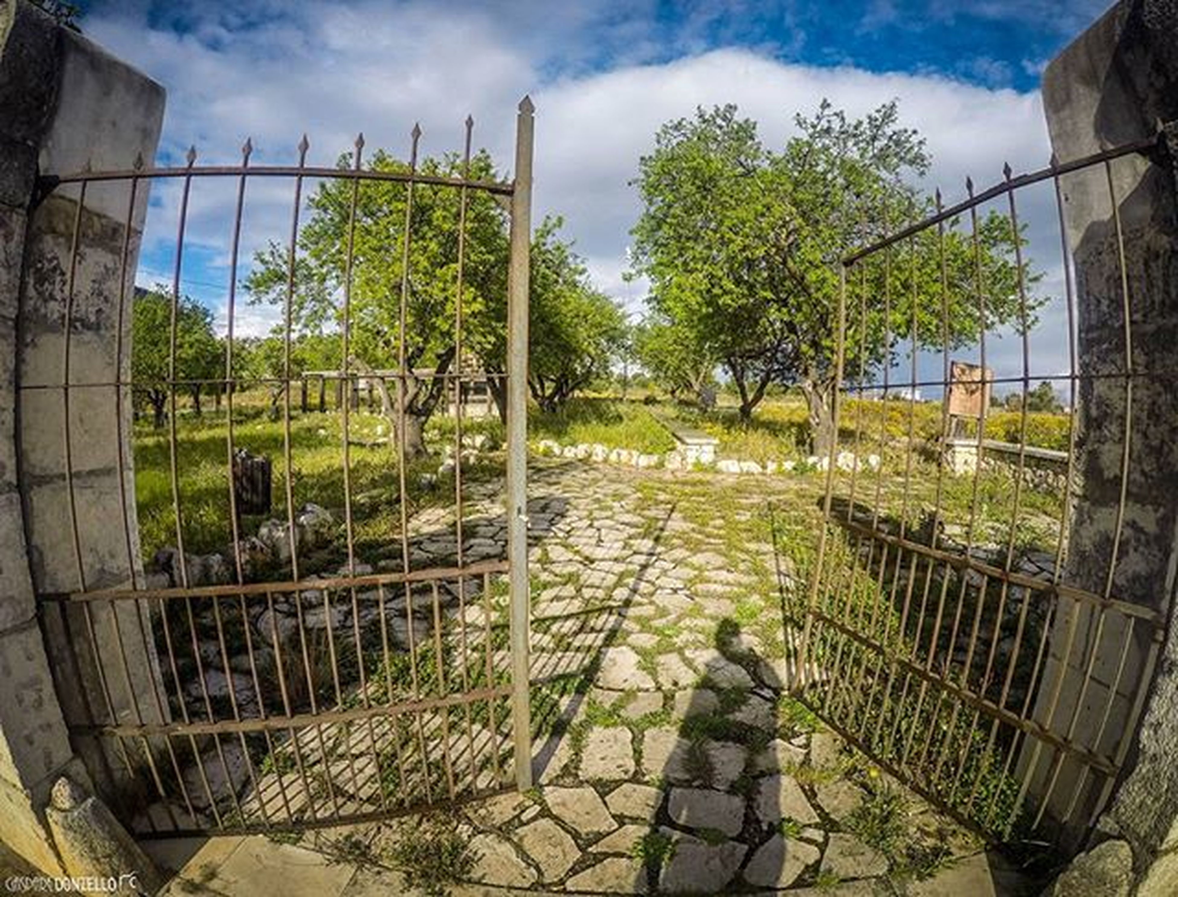 architecture, built structure, sky, tree, building exterior, fence, cloud - sky, green color, growth, day, cloud, railing, plant, grass, sunlight, outdoors, nature, metal, no people, wall - building feature
