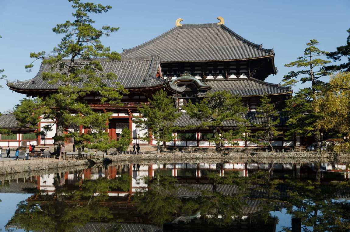 Ancient Architecture Buddism Day Nara Nara,Japan Reflection Temple Temple - Building Temple Architecture Toudaiji Travel Destinations Water Reflections World Heritage 奈良 奈良公園 東大寺