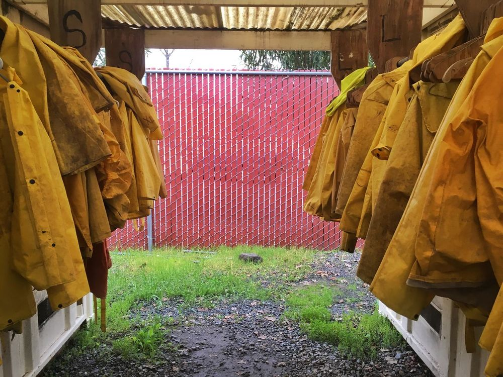 Rain Coats Hanging Multi Colored Large Group Of Objects Retail  No People Drying Day Outdoors Freshness Raincoat Rain Rain Coat IPhoneography Yellow Yellow Color Rainy Foul Weather Foul Weather Gear Grass Fence Wire Fence Frame Hang Dry Drying Clothes Coat