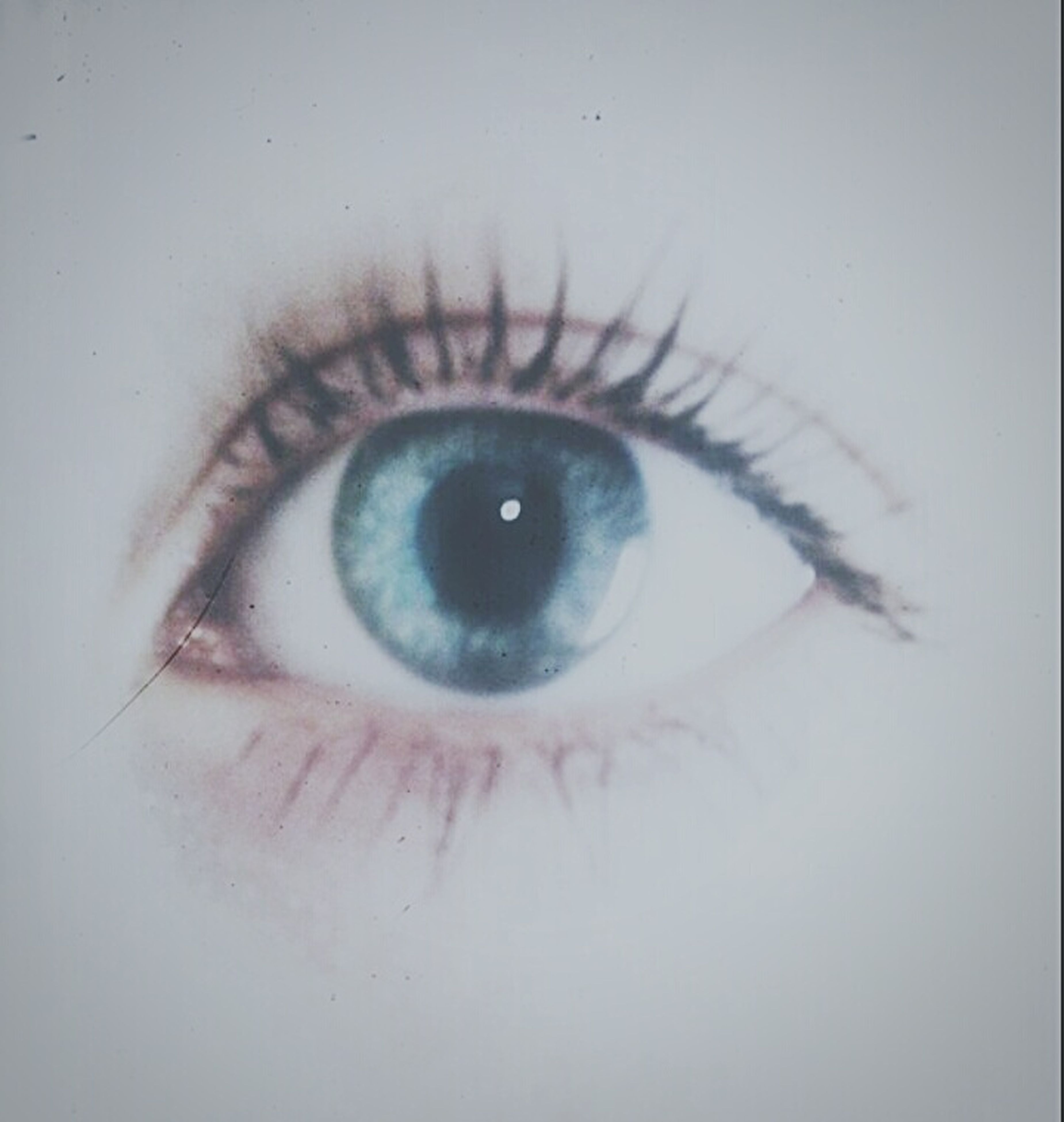 human eye, eyelash, close-up, eyesight, sensory perception, looking at camera, extreme close-up, iris - eye, eyeball, part of, portrait, human skin, indoors, eyebrow, lifestyles, human face, extreme close up