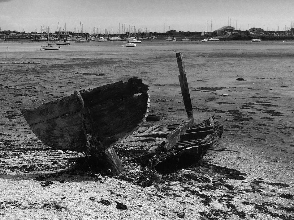 I love the way this boats turning from boat to fish. It all most as a tail and you can see its bones. Boat Wooden Boat Fish Shaped Decaying Wood Rotting Away