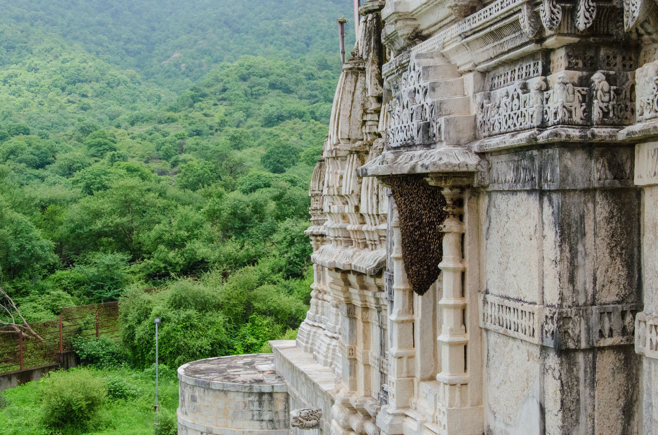 history, ancient, old ruin, architecture, ancient civilization, built structure, the past, archaeology, tree, stone material, travel destinations, day, architectural column, building exterior, no people, mountain, outdoors, nature