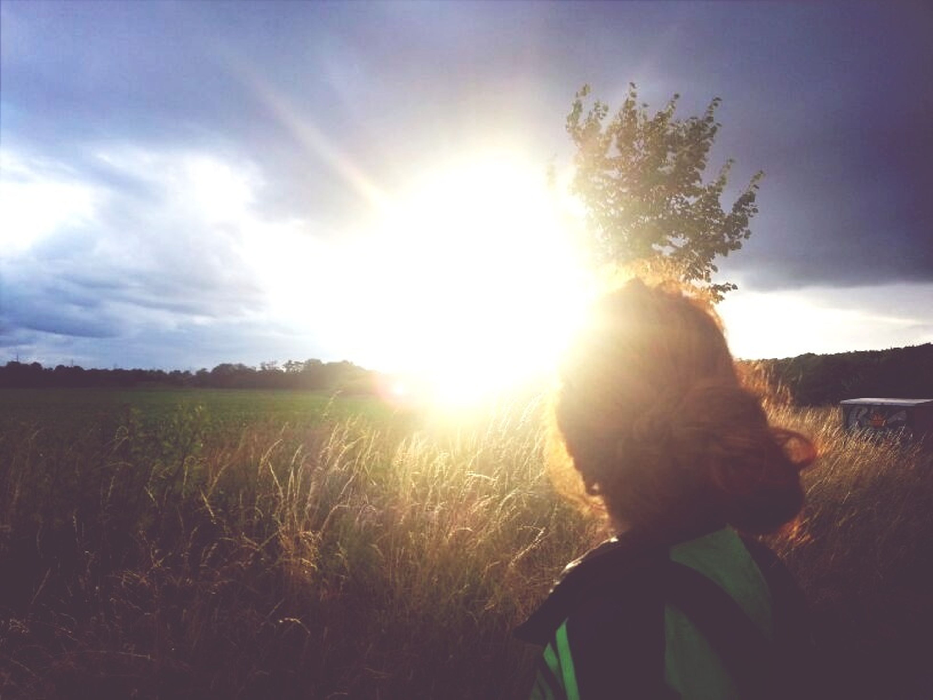 sun, sunbeam, sunlight, sky, lens flare, field, grass, leisure activity, lifestyles, nature, cloud - sky, landscape, sunset, sunny, cloud, outdoors, rear view, bright