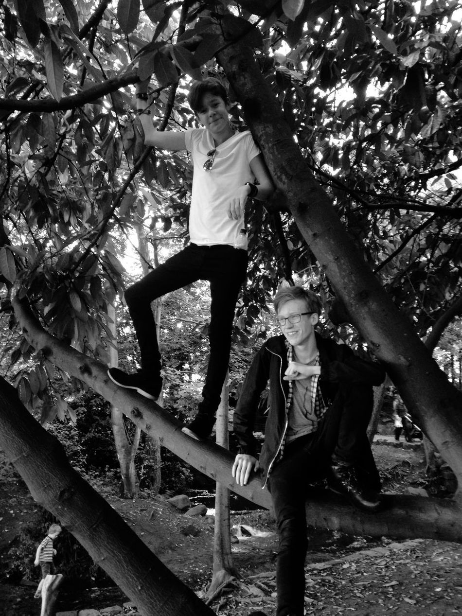 The Lost Boys Peterpan Neverland Findingneverland Remake2015 Lost Trees Jungle Blackandwhite