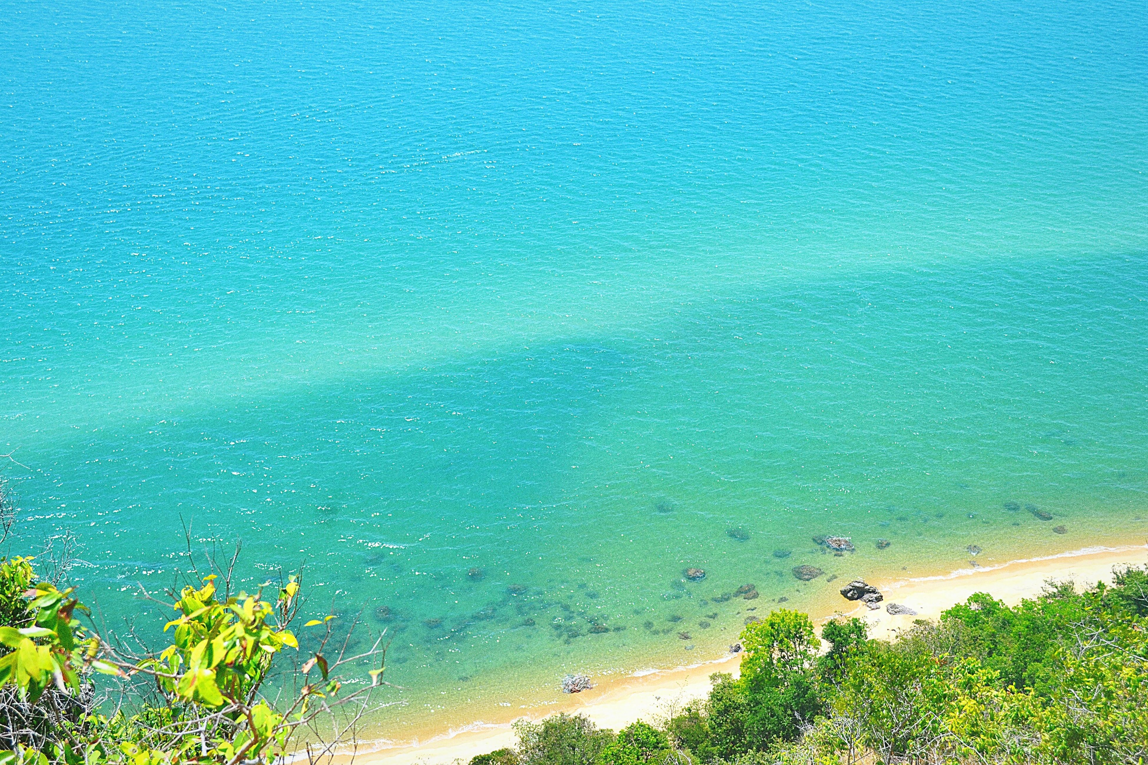 sea, water, blue, beach, tranquility, tranquil scene, beauty in nature, horizon over water, scenics, nature, shore, sand, coastline, idyllic, tree, high angle view, outdoors, growth, plant, day