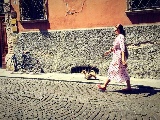 Dog Walking Walking Around Streetphotography Verona Italy Italy❤️ Street Photography Street Fashion EyeEm Italy Dog