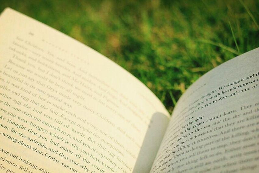 A good read Literature Books Garden Onpaper