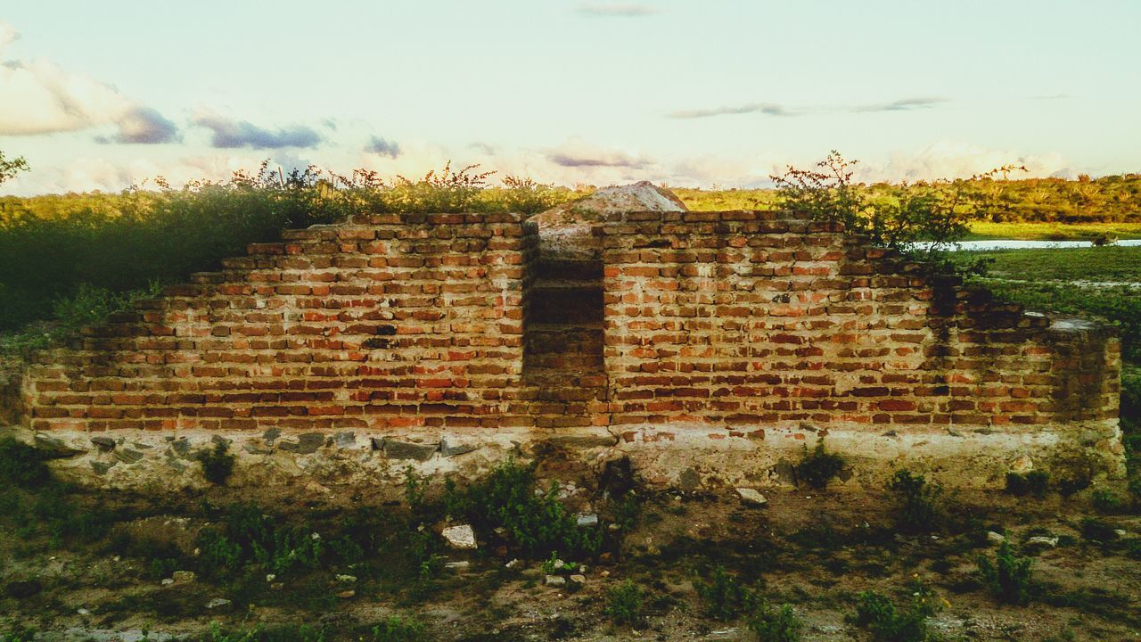 Hello World Wall Tijolos Nature Green Taking Photos Simplicity Simple Moment Simple Things Ruins