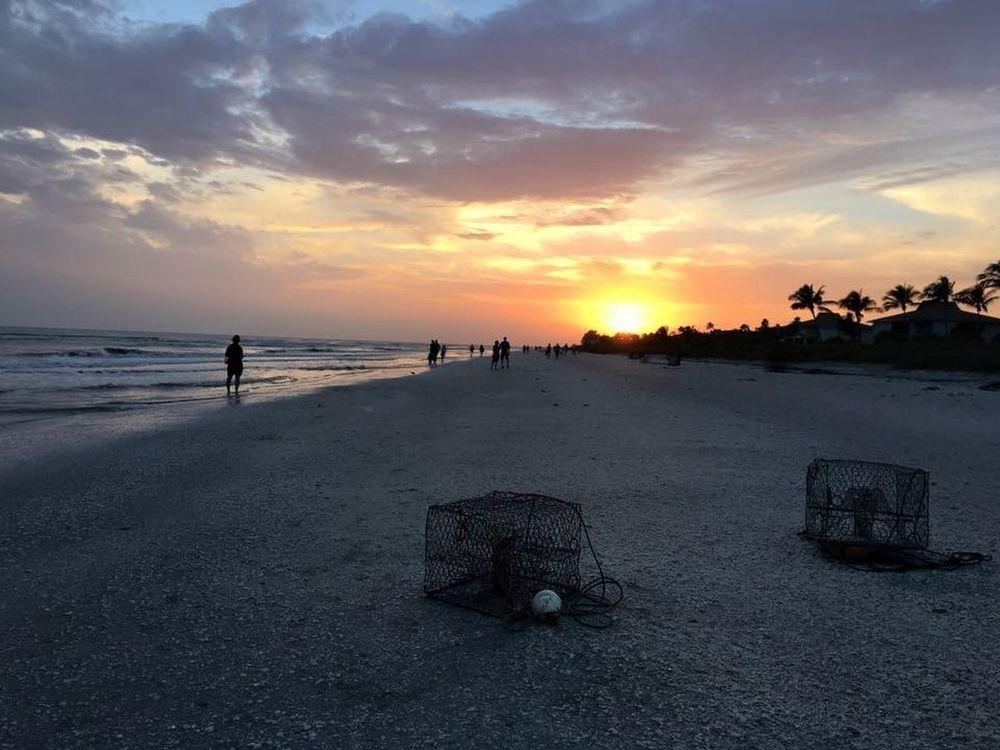 Beach IPhoneography Iphone6s No Filter Sanibel Sanibel Islands Florida Gulf Of Mexico Skyporn Sky Sky And Clouds Sunset Sun Palm Trees Sand Crabtraps Beach Walk