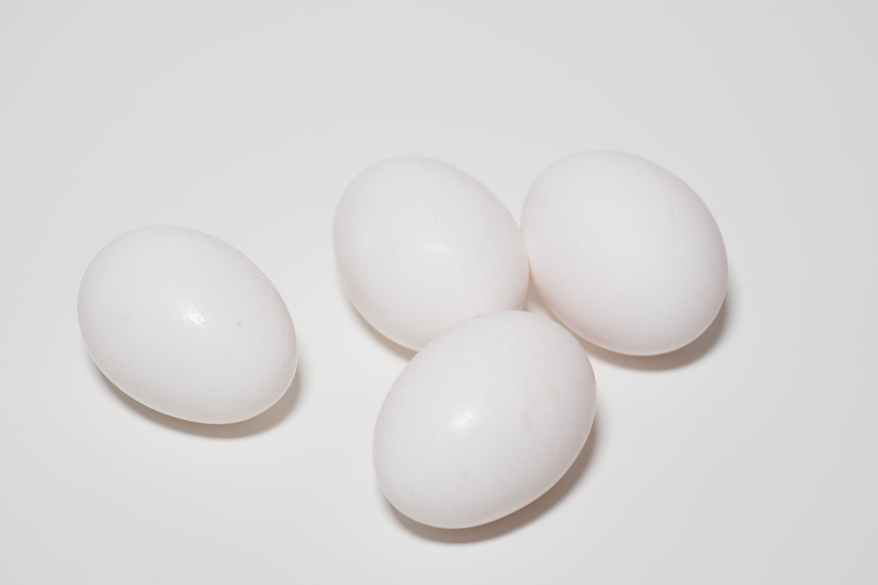 Some white eggs on a white background. Breakfast Eating Cholesterol Close-up Egg Eggs Ei Fipronil Food No People Raw Food Studio Shot White Background White Color