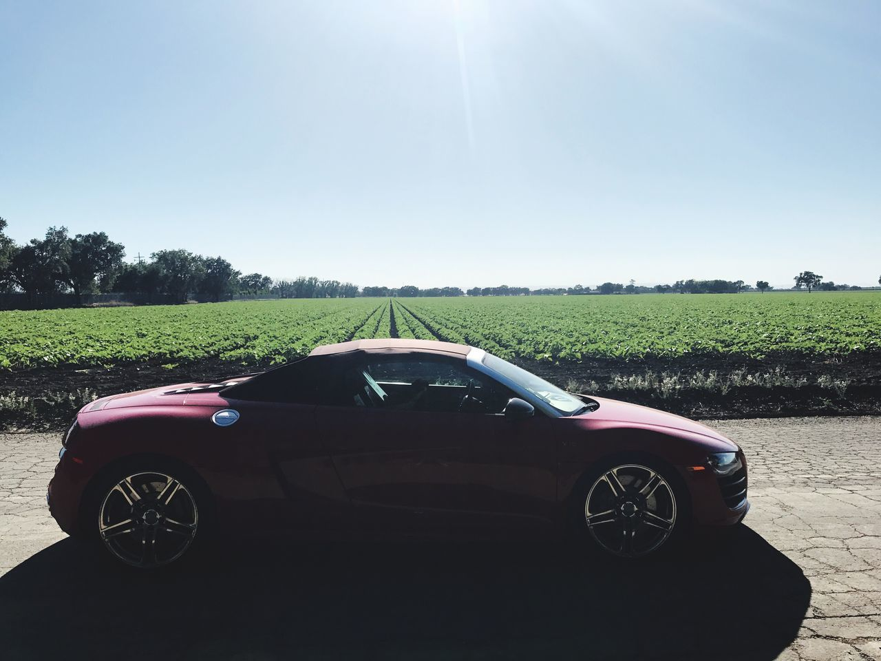 Field Growth Day Landscape Agriculture Transportation Nature Plant No People Clear Sky Outdoors Sky Supercar Audi R8 Spyder Car Auto