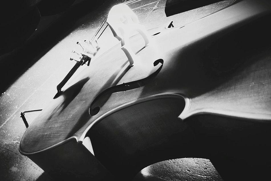 Photo made by Merylin Kolpakov - photo made with Samsung Note 3 neo Cello Stringed_instrument Festival Cremona 2015
