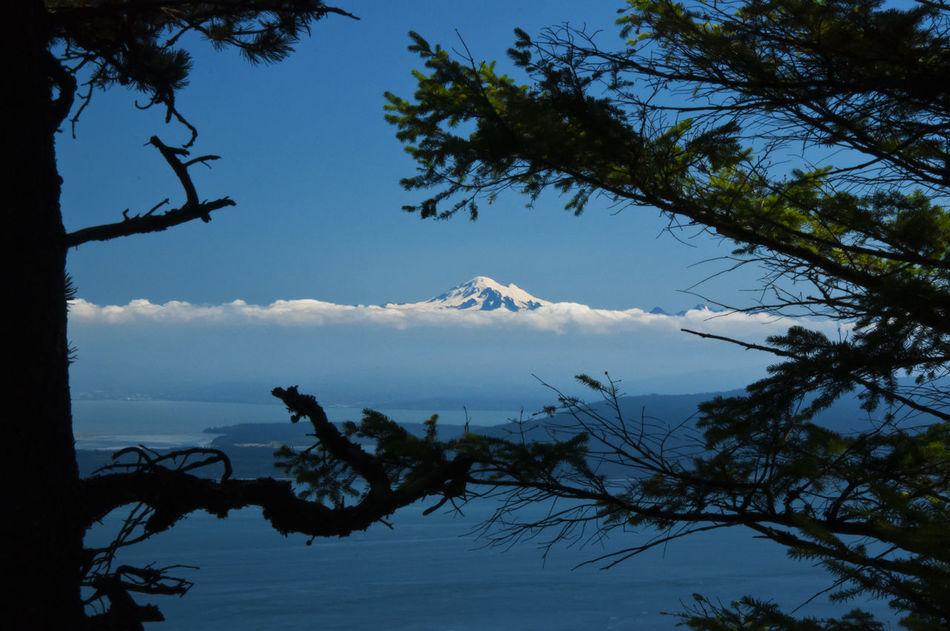 Framedbynature Mt. Baker Nature No People Puget Sound Sky Tree Water