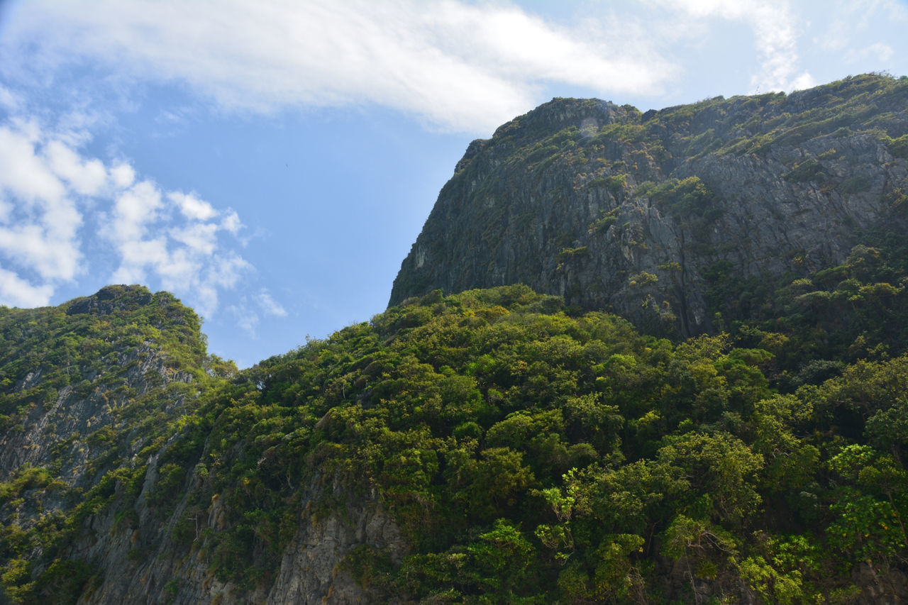 The wild nature of Maya Bay Cliff Cloud Cloud - Sky Geology Idyllic Landscape Low Angle View Mountain Mountain Range Nature Non-urban Scene Rock - Object Rock Formation Rocky Mountains Scenics Showcase April Sky Spotted In Thailand The KIOMI Collection Tranquil Scene Tranquility Tree