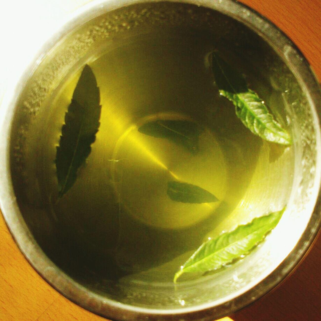 Zitronenverbene Tea Yellow Leaves