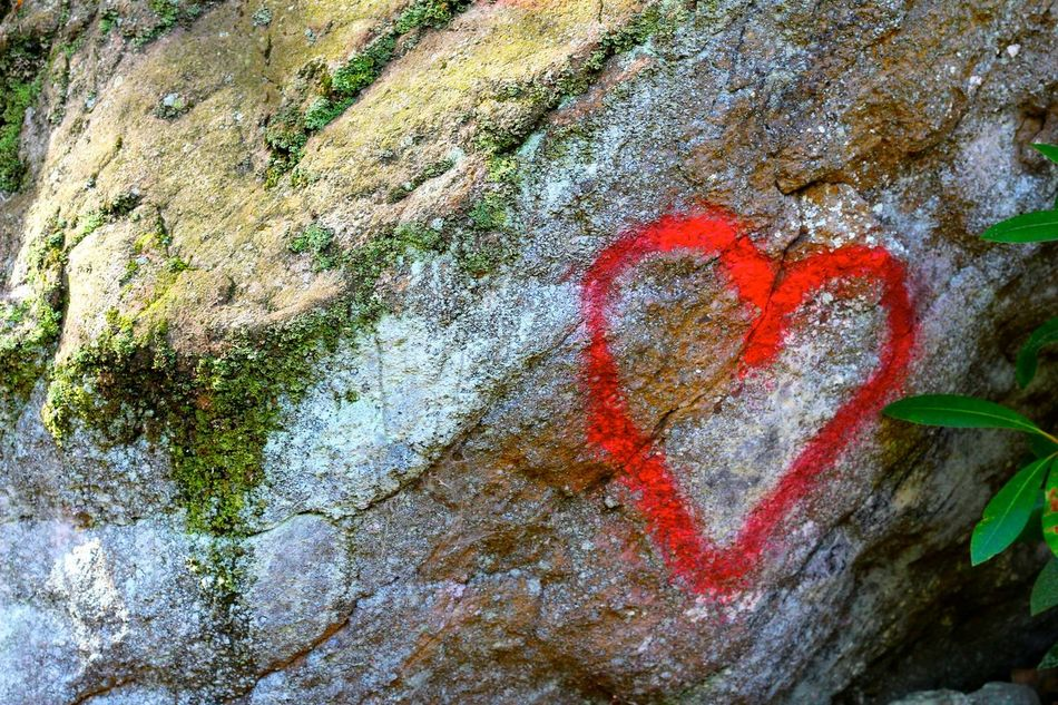 Beautiful stock photos of heart, Close-Up, Day, Heart Shape, High Angle View