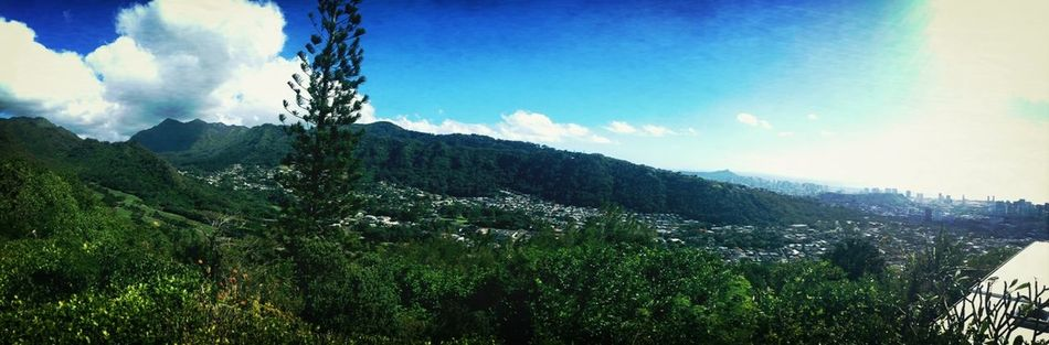 the view at my fale
