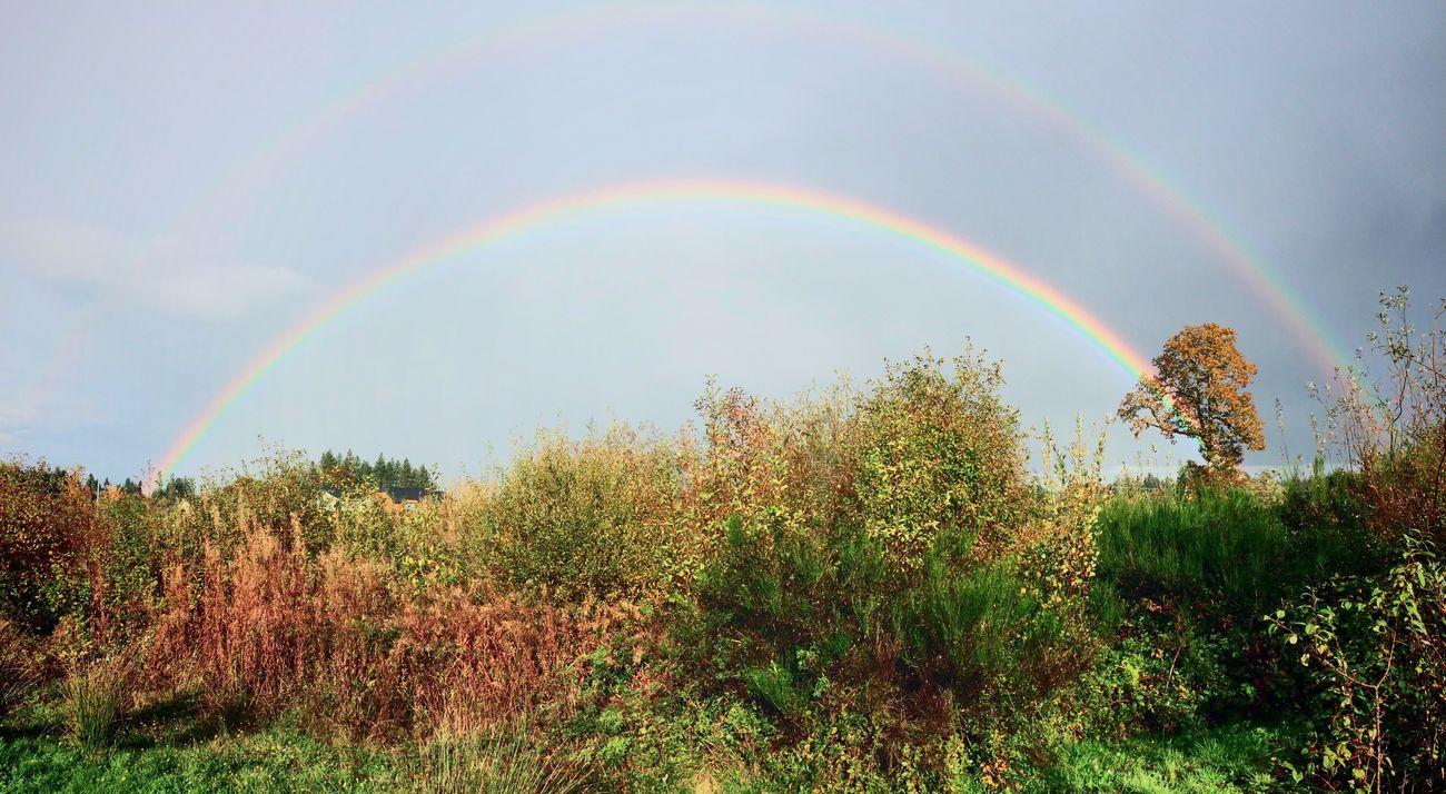 Rainbow First Eyeem Photo