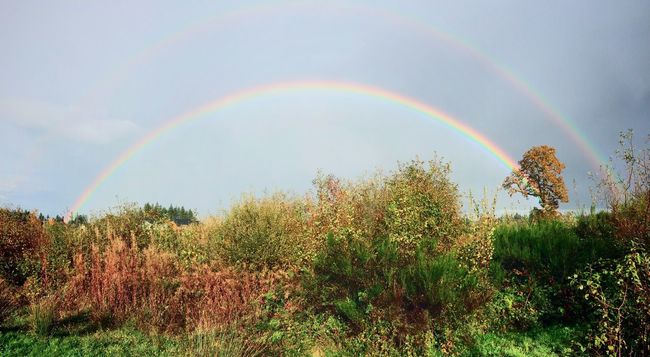 Rainbow First Eyeem Photo