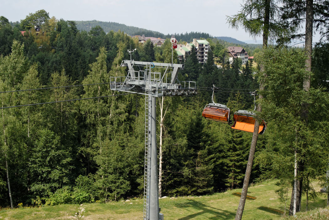 Chairlift Autunm Day Forest Green Color Karpacz Mountain Nature Tree