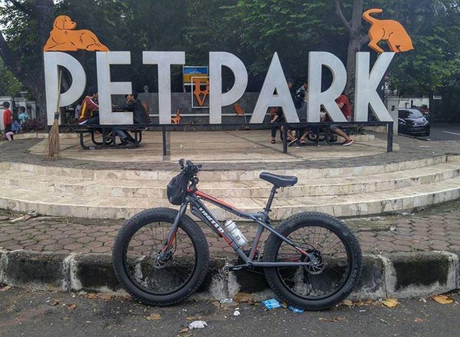 Sunday Morning Ride Bycicle Fatbike Fatbikes Fatbikeworld PetPark Petparkbdg Folker Val  2016 LGG4 LG  G4 😚