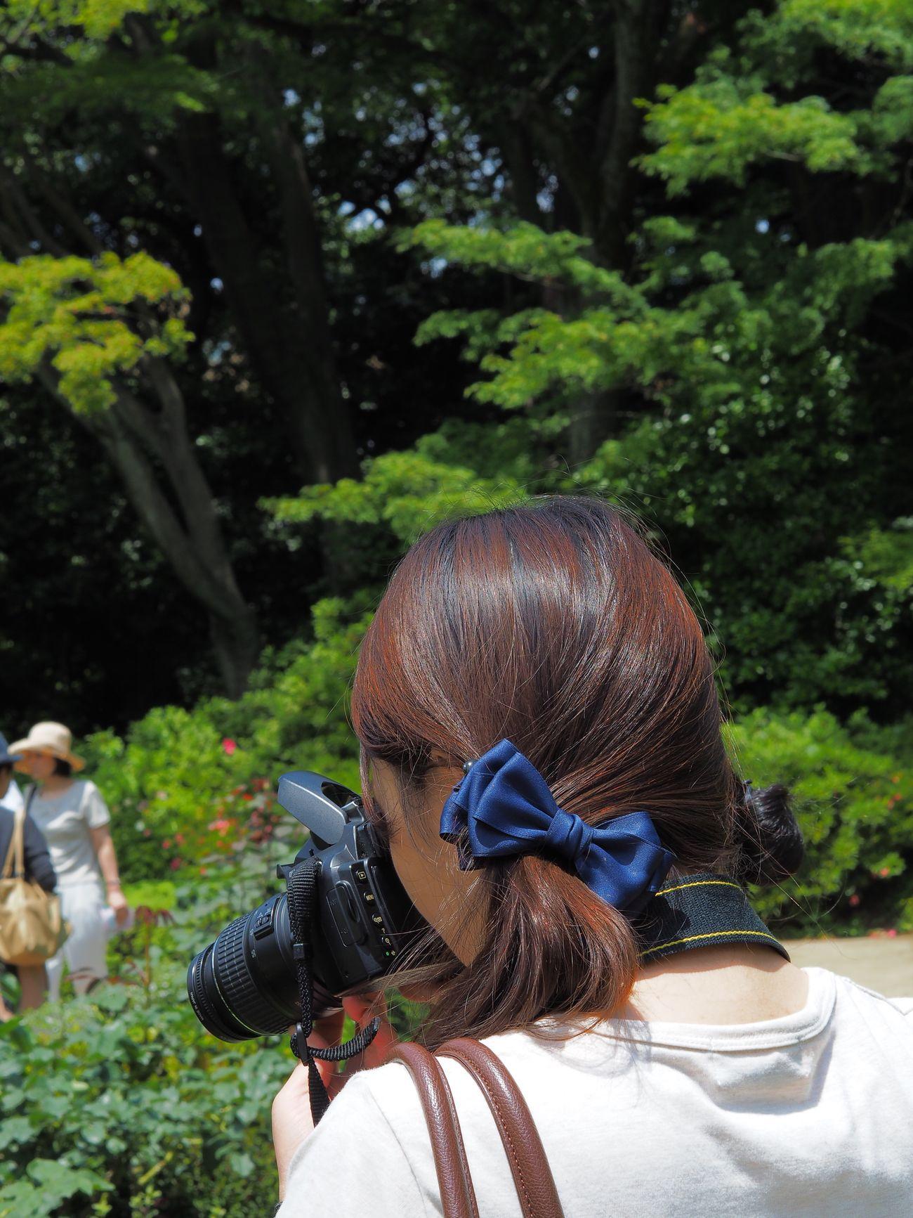 よく見かけるカメラ女子って、まずミラーレスじゃなくてキヤノンかニコンの一眼レフを使っていて、うんこ座りして首をありえない角度に曲げてファインダーを覗きながらローアングル撮影をするような気合の入った人たちで、 Rear View One Person Beautiful Woman Digital Single-lens Reflex Camera Leisure Activity Day Lifestyles Young Woman Young Adult Garden Snapshot Snapshots Of Life Japan Photography Olympus OM-D E-M5 Mk.II オリンパスPENを首からぶら下げて、「カメラ買ったんですけどぉ〜、使い方がわからないんですぅ〜。教えてくださーい。」なんて感じでキャピキャピした、いかにもオジサン受けするカメラ女子はいない。カメラ女子の現実と幻想。