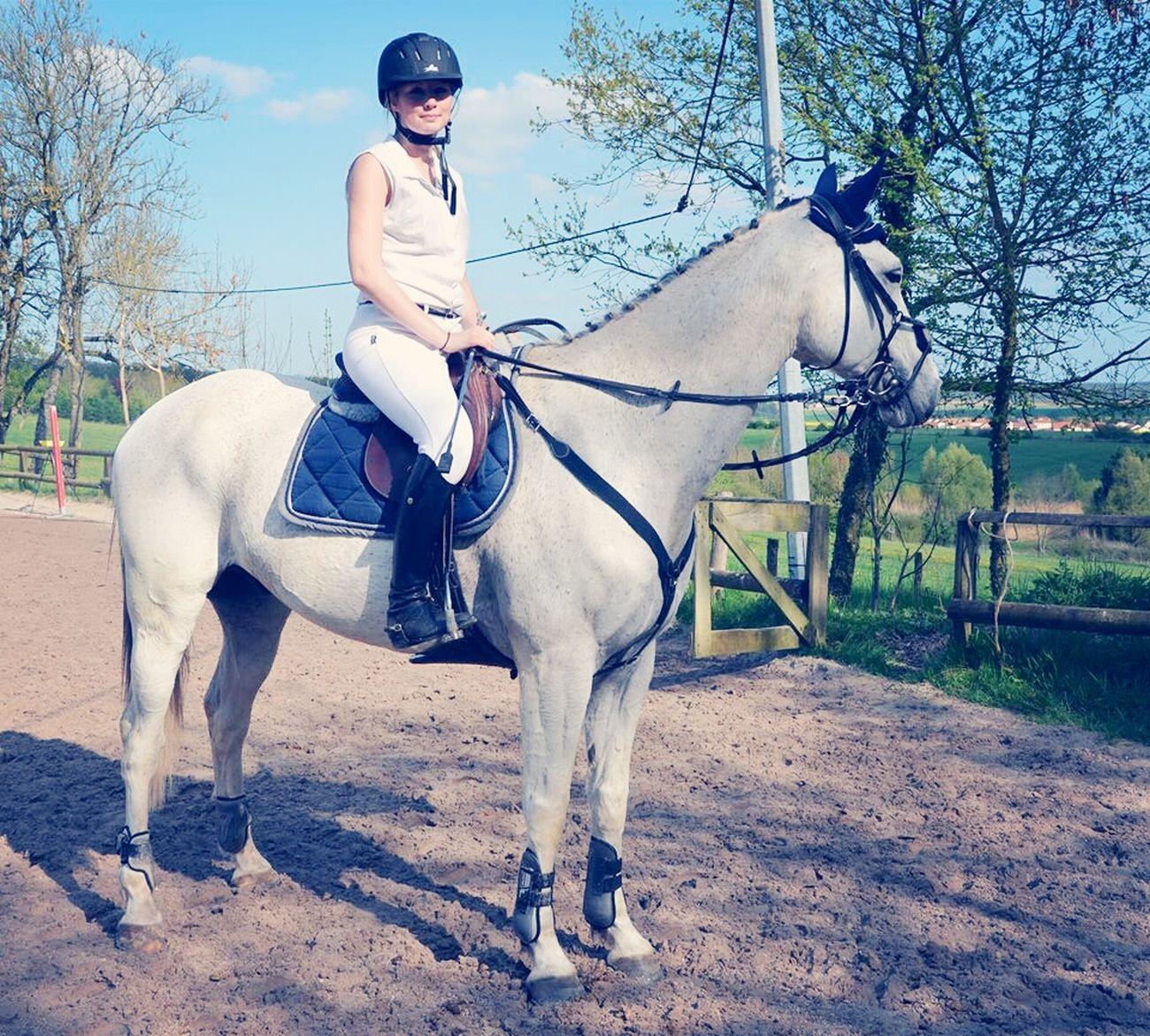 Horse Riding Remise Des Prix Premier