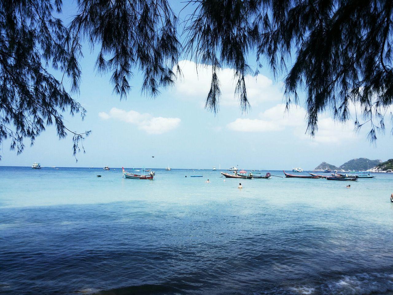 Shades Of Blue Sea View Koh Tao Thailand