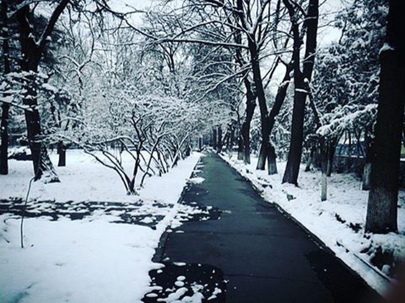 Winter2015 ❄