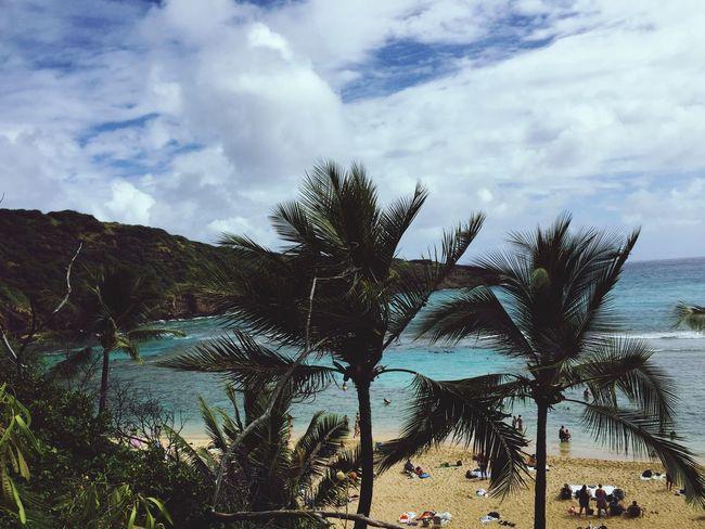 Hanaumabay Oahu