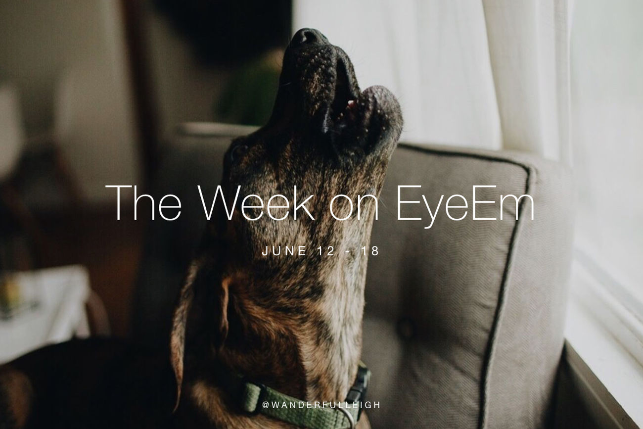 Set your eyes on the week's most standout photography: https://www.eyeem.com/blog/the-week-on-eyeem-24-2017/ The Week On EyeEm