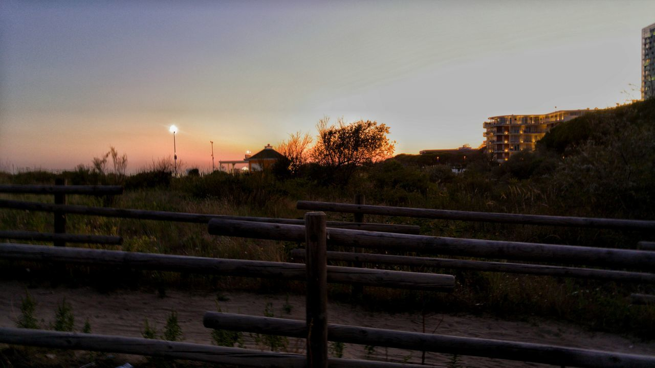railing, sunset, tree, no people, sky, outdoors, nature, clear sky, beauty in nature, day