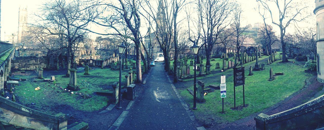 Edinburgh Greyfriars Graveyard Winter Trees Tomb Stones