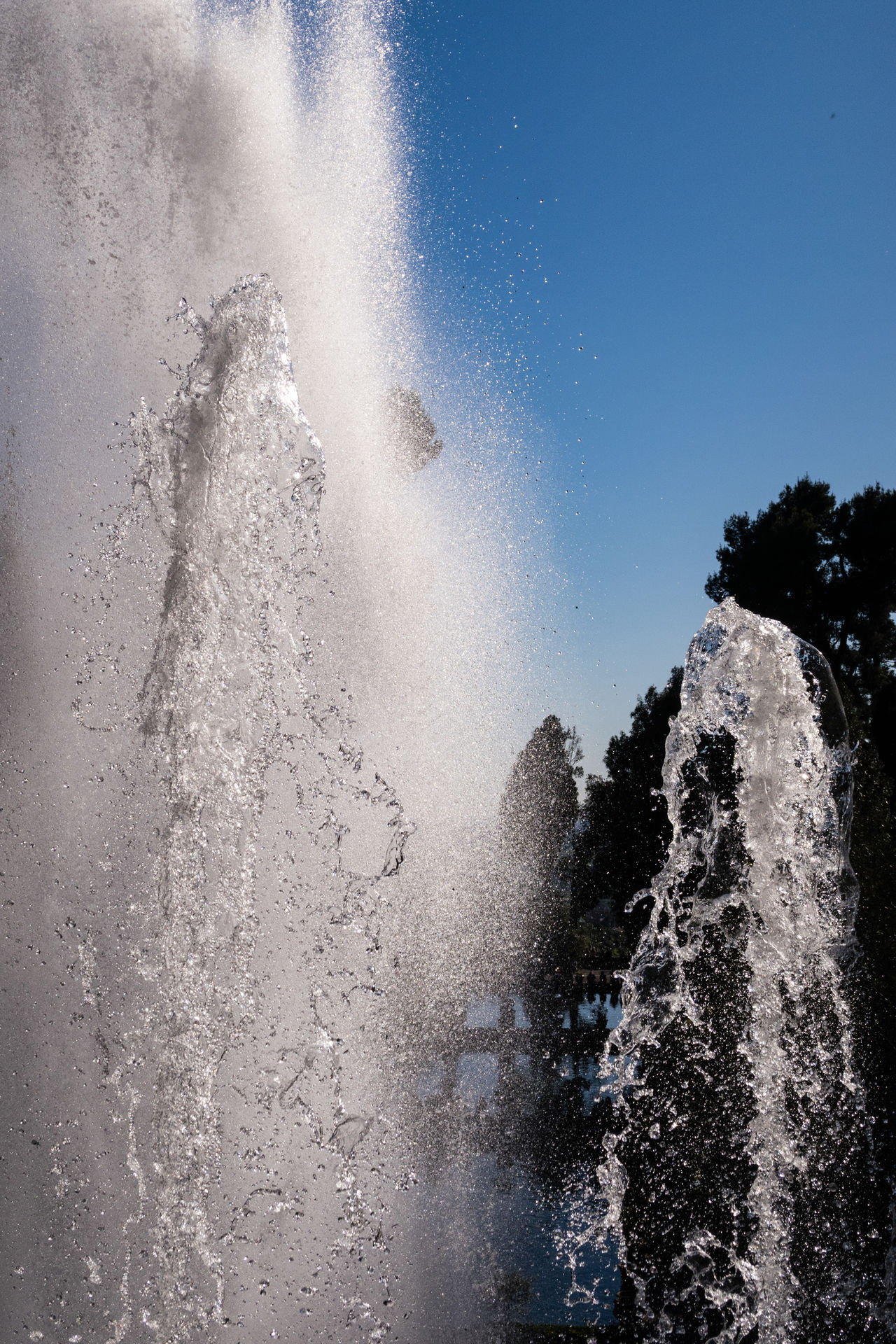 Beauty In Nature Close-up Day Force Fountain Historical Building Motion Nature No People Outdoors Power In Nature Splashing Spraying Tourism Tourist Attraction  Villa D'Este Water World Heritage Site
