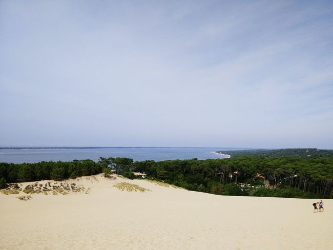 Dune Du Pyla Arcachon Ocean Beach Plage Foret Sable Sand