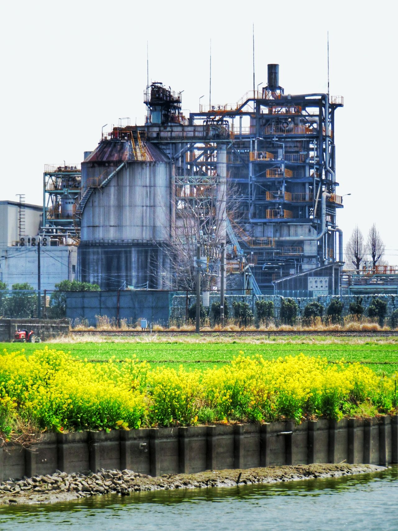 Factory Factory Building Factory Night View Factory Photo Factory Chimney Architecture Building Exterior Built Structure Growth Day Industry Outdoors Nature Sky Flower Spring Springtime Beauty In Nature 菜の花 工場 工場萌え Industrial Building  ロードバイク サイクリング 自転車