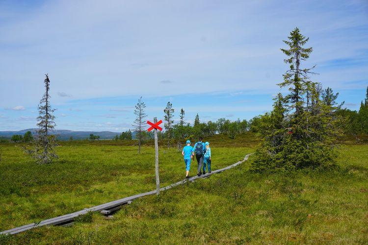 Field Grass People Day Sky Outdoors Growth Tree Nature Lofsdalen Walking Hiking Sweden Trail