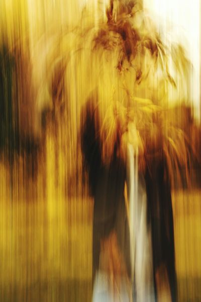 Blurred Motion Yellow Abstract Motion Backgrounds Defocused Outdoors Sunlight Sunlight EOS Photographer Eyeemphoto Streetphotographer Eye4photography  Canon Canonphotography Canonitalia EyeEm EyeEm Selects first eyeem photo Colours Colour Palette Gold Colored Nature