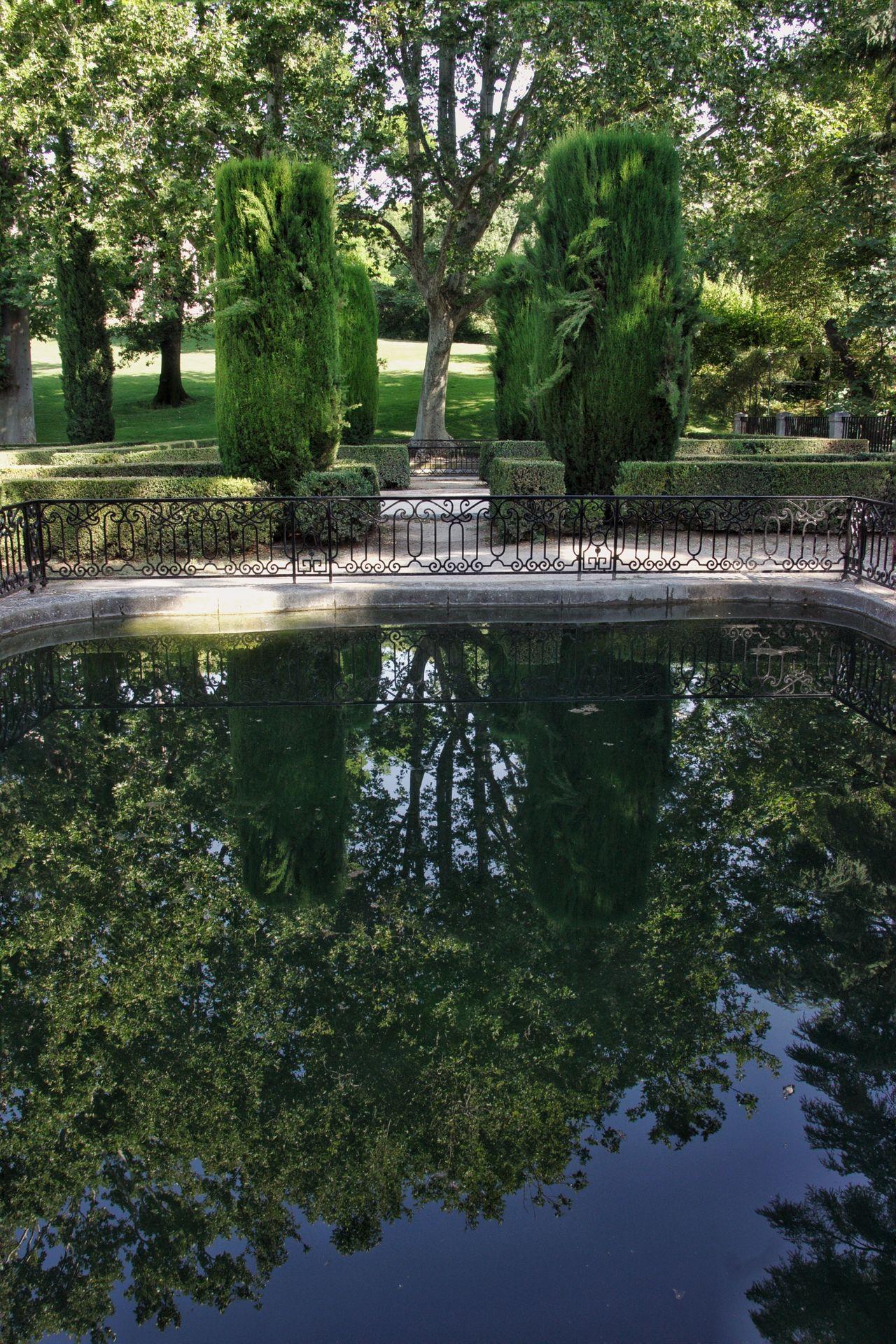 Parque de El Capricho en Madrid , SPAIN Tree Reflection Water Park - Man Made Space Nature Growth Green Color Waterfront Beauty In Nature Outdoors No People Garden Españoles Y Sus Fotos Flower