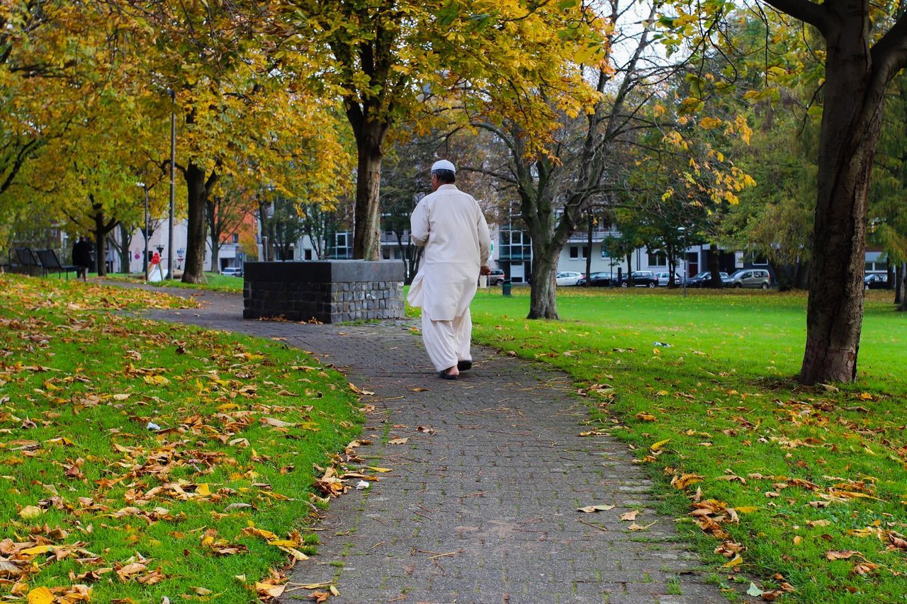 autumn, leaf, tree, change, full length, walking, leisure activity, nature, park - man made space, one person, outdoors, lifestyles, men, real people, grass, day, adult, beauty in nature, people, one man only, only men, adults only
