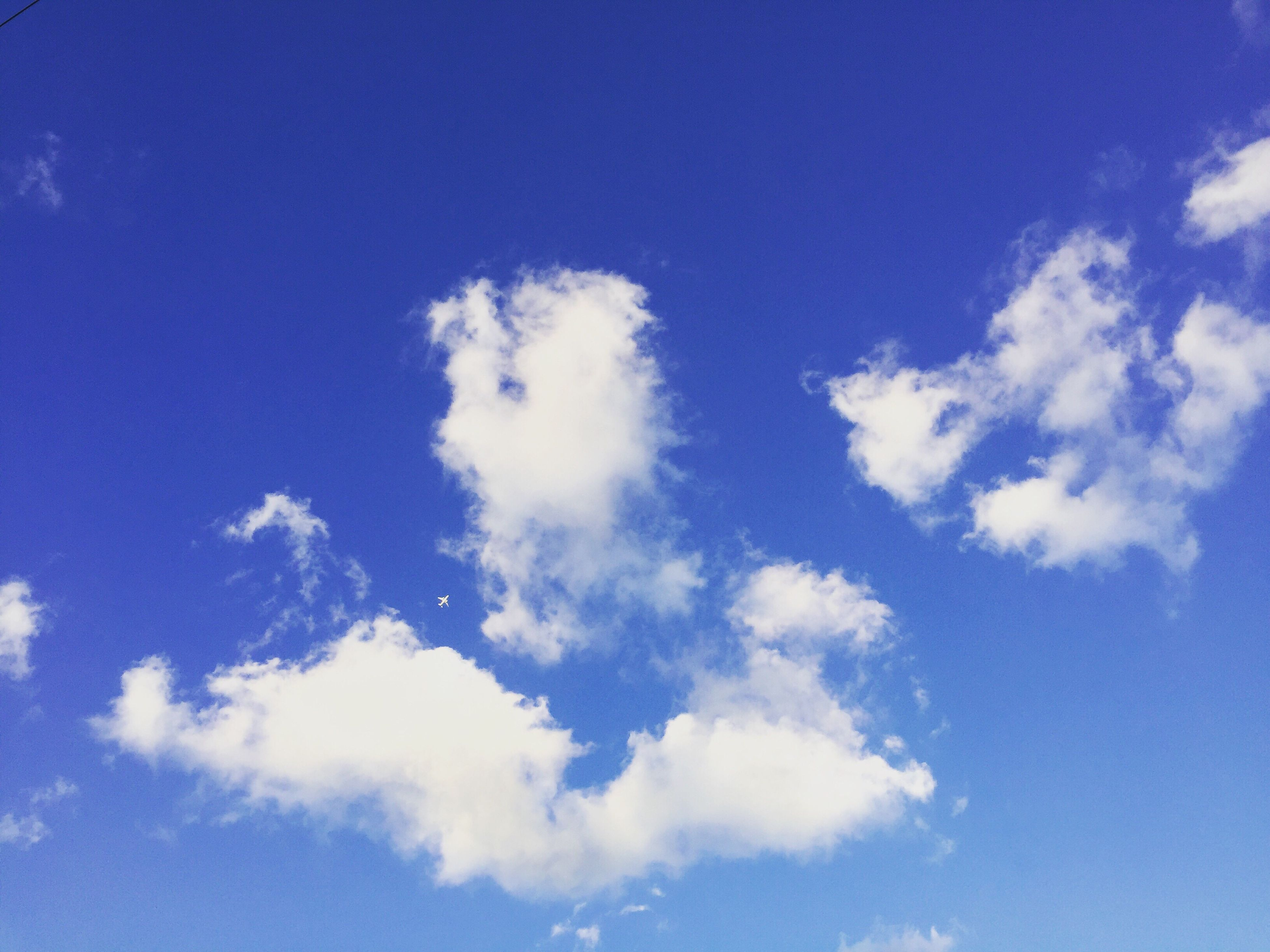 blue, low angle view, sky, sky only, beauty in nature, cloud - sky, tranquility, nature, scenics, tranquil scene, cloud, white color, backgrounds, cloudscape, idyllic, day, outdoors, no people, white, fluffy