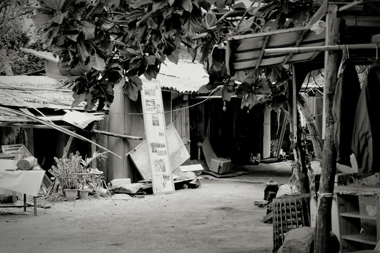 莿桐部落 EyeEm Best Shots - Black + White