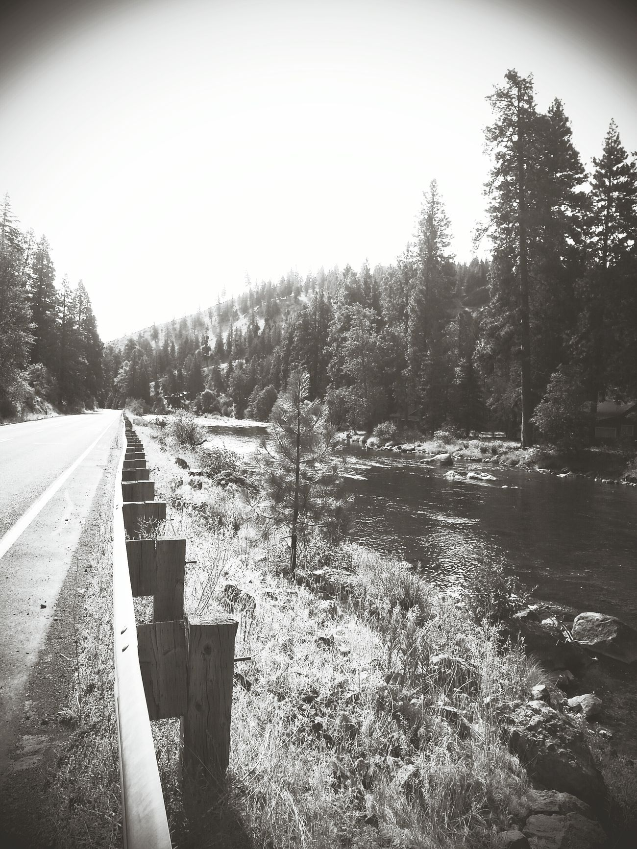 Shades Of Grey Great Outdoors Mountain View Mountain_collection River View First Eyeem Photo