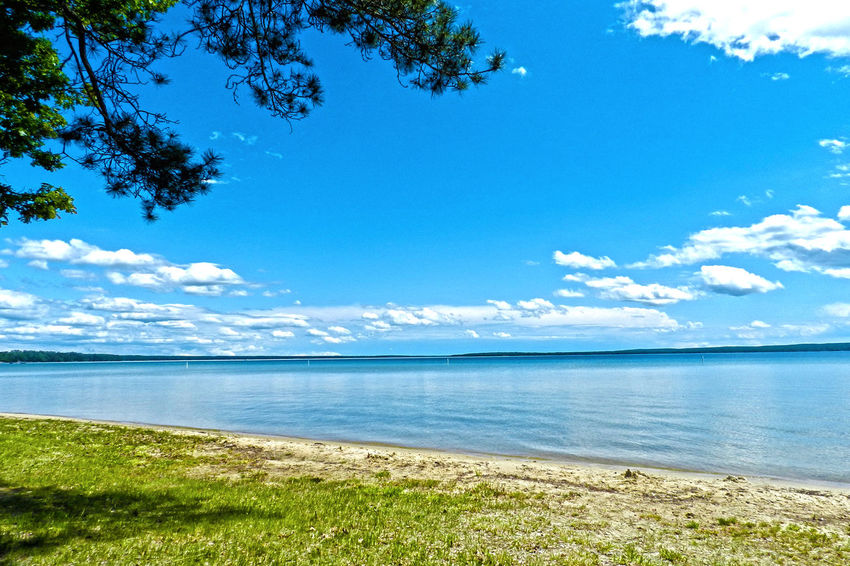 Higgins Lake in Michigan Beauty In Nature Blue Calm Cloud Cloud - Sky Coastline Day Grass Growth Higgins Lake Horizon Over Water Idyllic Lake Lakeshore Landscape Michigan Nature No People Outdoors Scenics Shore Sky Tranquil Scene Tranquility Water