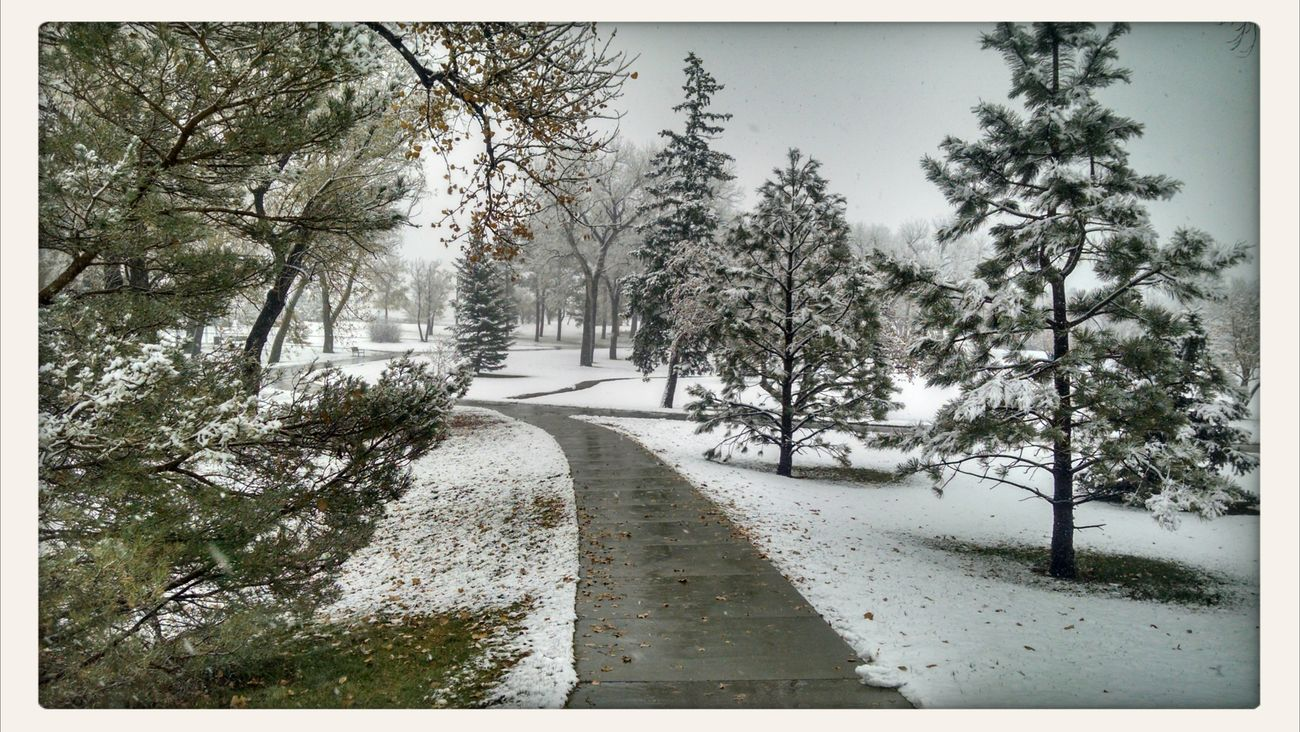 First Snow ♥ LandscapeCheyenne  Park