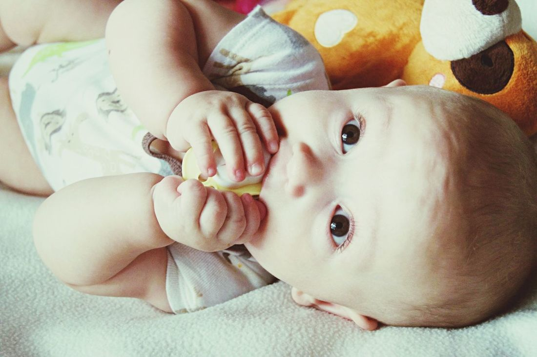 Jovalier 💙 Adorable Babyboy Cutie Prince  Love Angel 5months  2015  📷