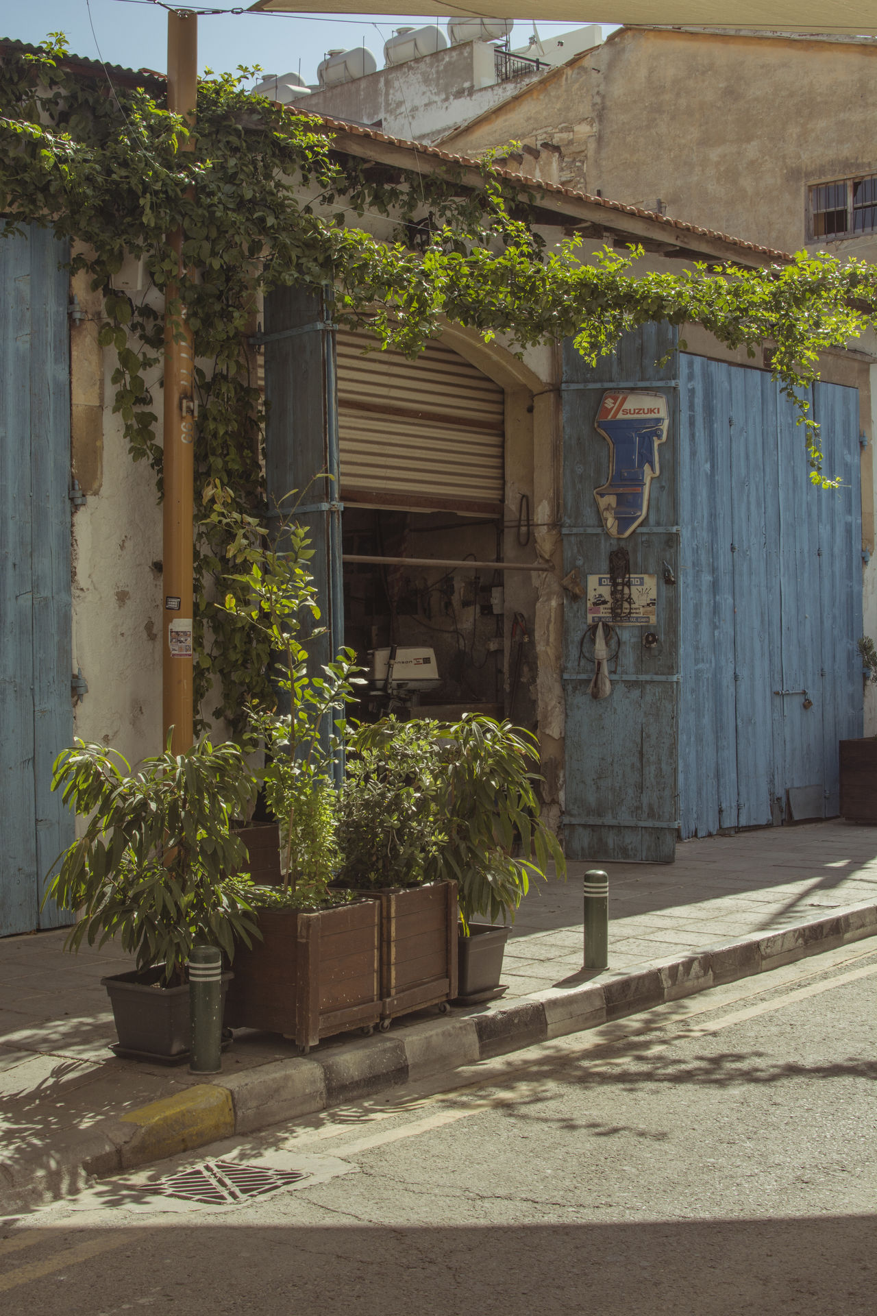 Larnaca Old Street Architecture Building Exterior Built Structure Cyprus Day Growth Nature No People Old Street Outdoors Plant Potted Plant The Great Outdoors - 2017 EyeEm Awards Tree