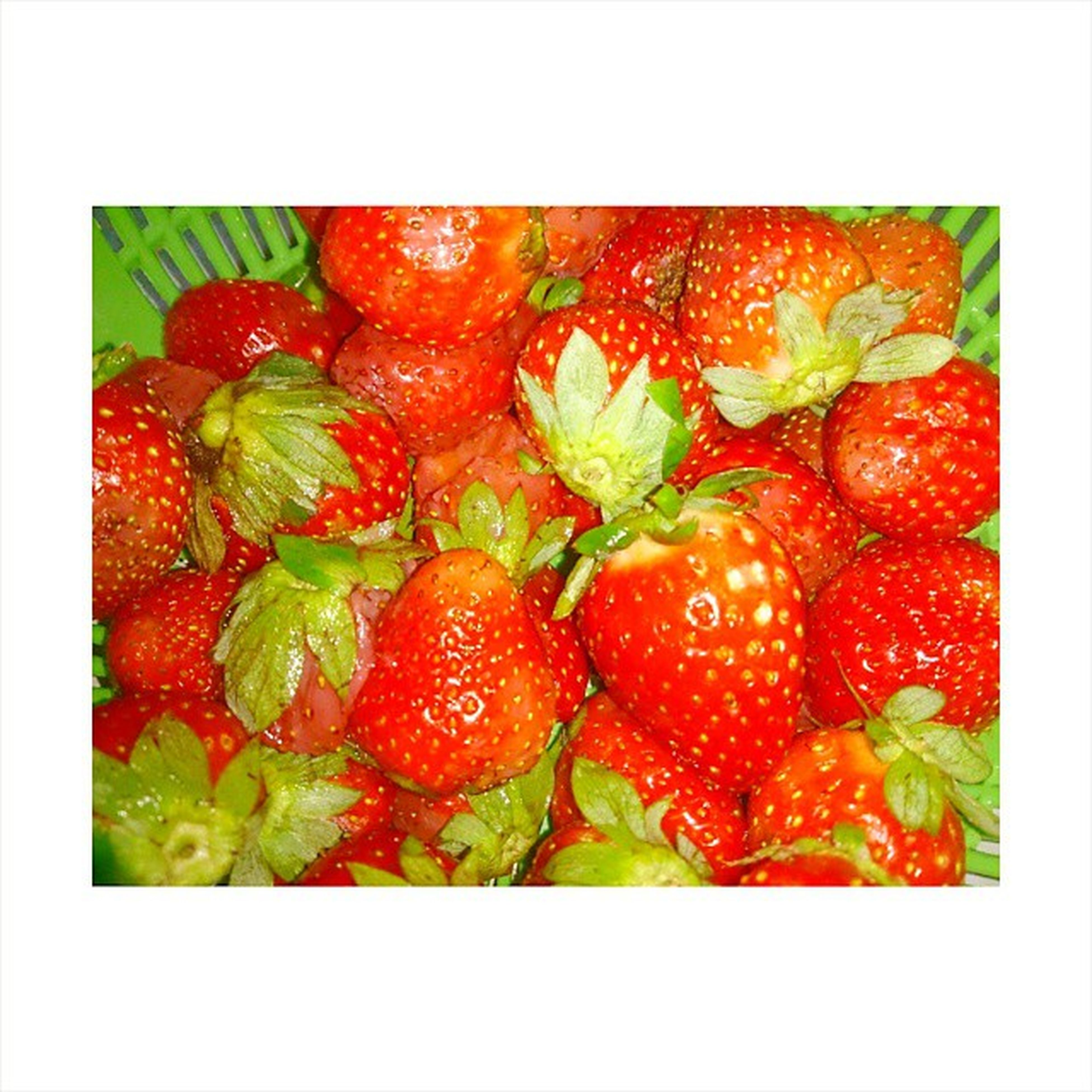 transfer print, auto post production filter, red, food and drink, freshness, food, fruit, healthy eating, studio shot, close-up, strawberry, indoors, frame, still life, vibrant color, abundance, full frame, high angle view, no people, organic