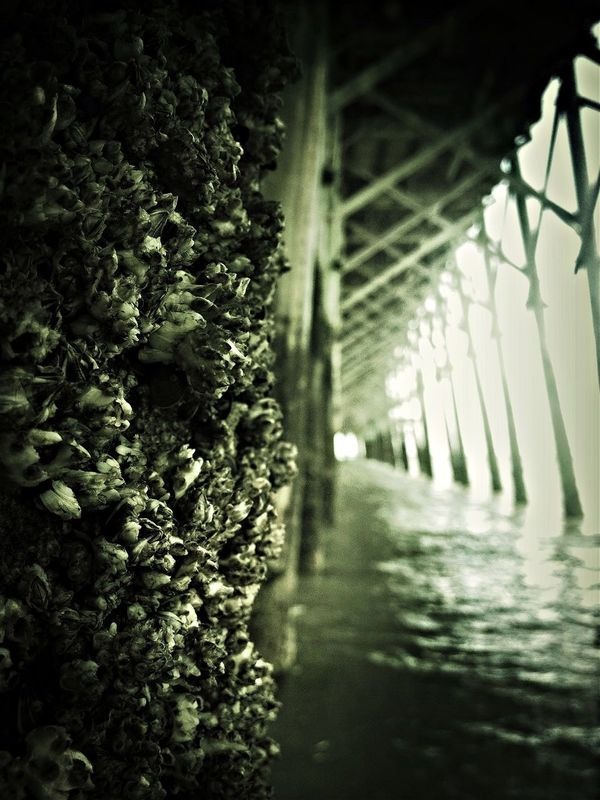 under the boardwalk, down by the sea