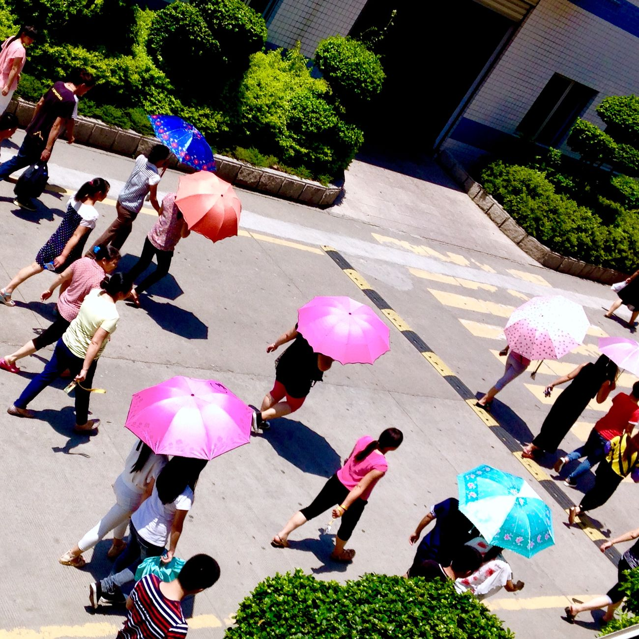 It's Hot Outside / Hot Day / Back To Work  / Lunchbreak is over / Parasol / Colorful